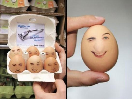 ウィルキンソン卵